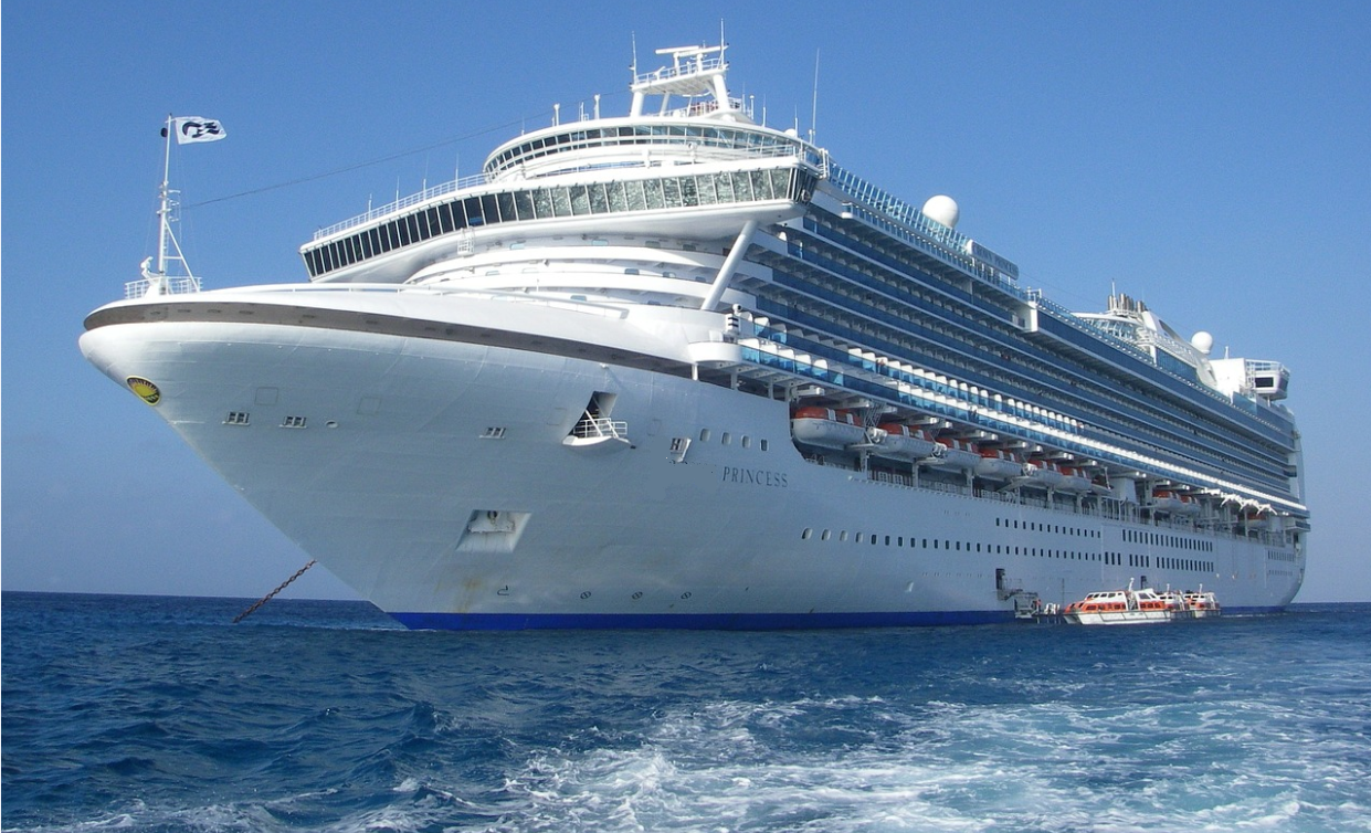 A significantly foreseeable incident?  Questions are many but answers are few in the 'Ruby Princess' controversy